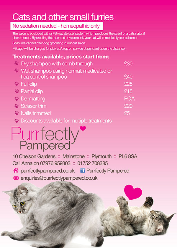 Cat Groomer Leaflet Printing and Design